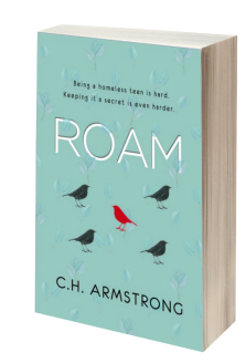 Roam 3D Book Cover